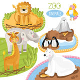 Set of vector animals. Vector zoo animals. Such as penguin, polar beer, lion and other Stock Photo