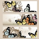 Set of vector  backgrounds with butterflies for design Royalty Free Stock Photos