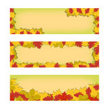 Set of vector banners with colorful autumn leaves. Autumn leaves for your design. Isolated on white background. Royalty Free Stock Photo