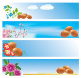 Set of vector backgrounds with easter theme Royalty Free Stock Photography