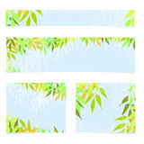 Set of vector banners with green leaves. Spring or summer nature background Stock Photos