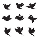Set of vector bird icons. On white background vector illustration