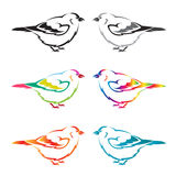 Set of vector bird Royalty Free Stock Images