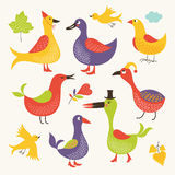Set of vector birds Royalty Free Stock Photo