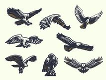 Set of vector eagles. stock illustration