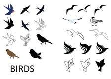 Set of vector birds. Vector birds, silhouette, vector, logo. Greate beautiful creatures stock illustration