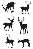 Set of vector black deers Royalty Free Stock Image