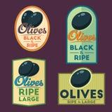 Set of vector black ripe Olives badges. Stock Images