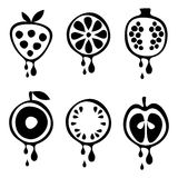 Set of vector black and white illustrations of fruits. Stock Photography
