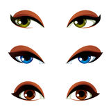 Set of vector blue, brown and green eyes. Female eyes expressing. Different emotions, face features of seducing women Royalty Free Stock Photos