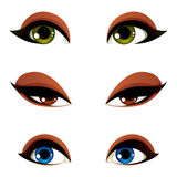 Set of vector blue, brown and green eyes. Female eyes expressing. Different emotions, face features of seducing women Royalty Free Stock Image