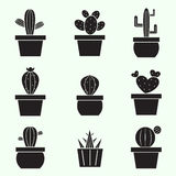 Set of vector cactus icons Stock Photo