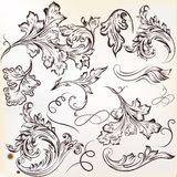 Set of vector calligraphic swirl ornaments for design Royalty Free Stock Images