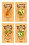 Vegetables card set. Set of vector card templates products of healthy food vegetables on vertical vintage tags tomato, avocado, arubz, cucumber, slice Stock Image