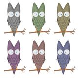 Set vector cartoon clip art illustration of a cute owl mascot. isolated on white background. flying bird with big eyes. Sitting on a branch. different color Royalty Free Stock Photo