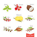 Set of Vector cartoon superfoods. Illustration for your design. Stock Photos