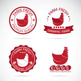 Set of vector an chicken and eggs label Royalty Free Stock Photo