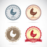 Set of vector an chicken label Stock Photo