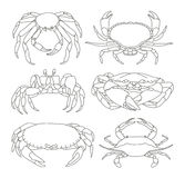 Set of vector crab icons Royalty Free Stock Photo