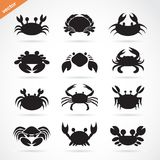Set of vector crab icons on white background. Aquatic animals.  Royalty Free Stock Image