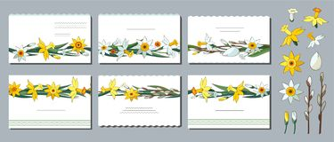 Set of vector creative floral business cards. Templates with daffodils, willow branches. Willow branches and flowers stock illustration