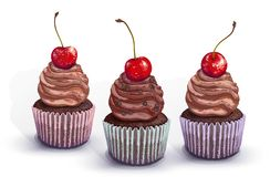Set of vector cupcakes. A crumbly, chocolate gentle wet biscuit muffin with a chocolate tender and soft air cream cheese. With chocolate pieces and cherry vector illustration