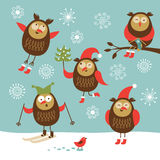 Set of vector cute owls Stock Image