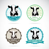 Set of vector an dairy cows label Stock Images