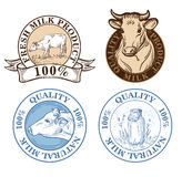 Set of vector an dairy cows label Stock Photo