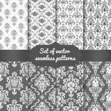 Set of vector damask seamless pattern backgrounds. Classical luxury old fashioned damask ornament, royal victorian seamless texture for wallpapers, textile Royalty Free Stock Images