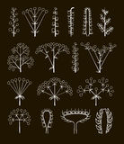 Set of vector different types of inflorescence Stock Image