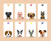 Set of vector dog cards Stock Images
