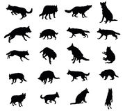 Set of vector dogs Royalty Free Stock Photo