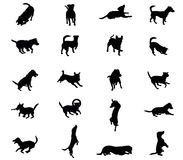 Set of vector dogs silhouettes. Set vector silhouettes of dogs Jack Russel terrier in black color cut out on white background royalty free illustration