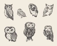 Set vector drawn owls vintage style Royalty Free Stock Photo