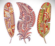 Set vector feather Royalty Free Stock Image