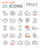 Set Vector Flat Line Icons Fruit Stock Photo