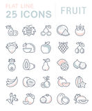 Set Vector Flat Line Icons Fruit Royalty Free Stock Photo