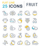 Set Vector Flat Line Icons Fruit Royalty Free Stock Image