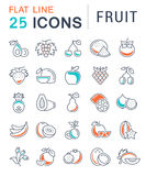 Set Vector Flat Line Icons Fruit Royalty Free Stock Photography