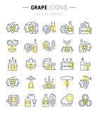 Set Vector Flat Line Icons Grape Royalty Free Stock Photo