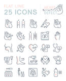 Set Vector Flat Line Icons Heart Defect royalty free illustration