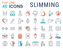 Set Vector Flat Line Icons Slimming Royalty Free Stock Photo