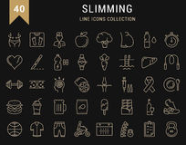 Set Vector Flat Line Icons Slimming Royalty Free Stock Photos