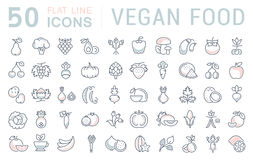 Set Vector Flat Line Icons Vegan Food Stock Image