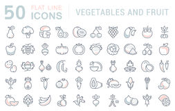 Set Vector Flat Line Icons Vegetables and Fruit Stock Photography