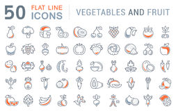 Set Vector Flat Line Icons Vegetables and Fruit Royalty Free Stock Photo