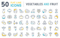 Set Vector Flat Line Icons Vegetables and Fruit Royalty Free Stock Image
