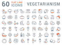 Set Vector Flat Line Icons Vegetarianism Royalty Free Stock Photo
