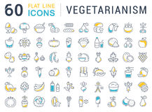 Set Vector Flat Line Icons Vegetarianism Stock Images